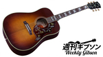 Gibson / Hummingbird Vintage