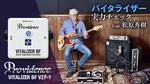 Providence / Vitalizer BF VZF-1