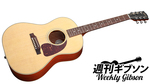 Gibson Acoustic / LG-2 American Eagle