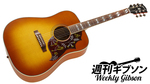 Gibson / Hummingbird Standard