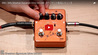 EBS / Billy Sheehan Signature Drive DELUXE EBS / Billy Sheehan Signature Drive DELUXE