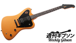 Gibson USA / Vintage Copper Firebird Limited