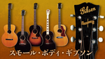 Gibson Acoustic Player's Book