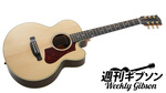 Gibson Acoustic / HP665SB