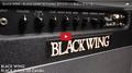 BLACK WING / BLACK HAWK 30 Combo