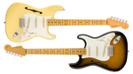 Fender / Eric Johnson Signature Stratocaster Thinline