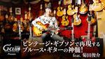 Gibson / ES-335、ES-345、Byrdland、Les Paul Gold Top