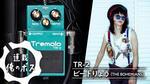 BOSS / TR-2