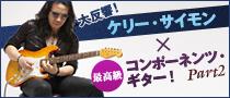 ケリー・サイモン/コンポーネンツ・ギター2
