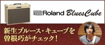 曽根巧 meets Roland Blues Cube