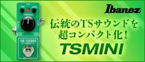 Ibanez / TSMINI(製品レビュー)