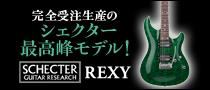 【製品レビュー】SCHECTER / REXY RX-2-24-CTM-VTR
