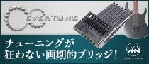 【製品レビュー】VGS / Soulmaster ※Evertuneシステム搭載器