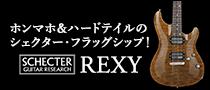 【製品レビュー】SCHECTER / REXY RX-2-24-CTM-TOM