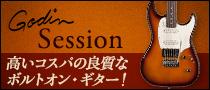 【製品レビュー】Godin / Session
