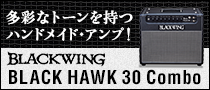 【製品レビュー】BLACKWING / BLACK HAWK 30 Combo
