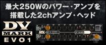 【製品レビュー】DV MARK / EVO1